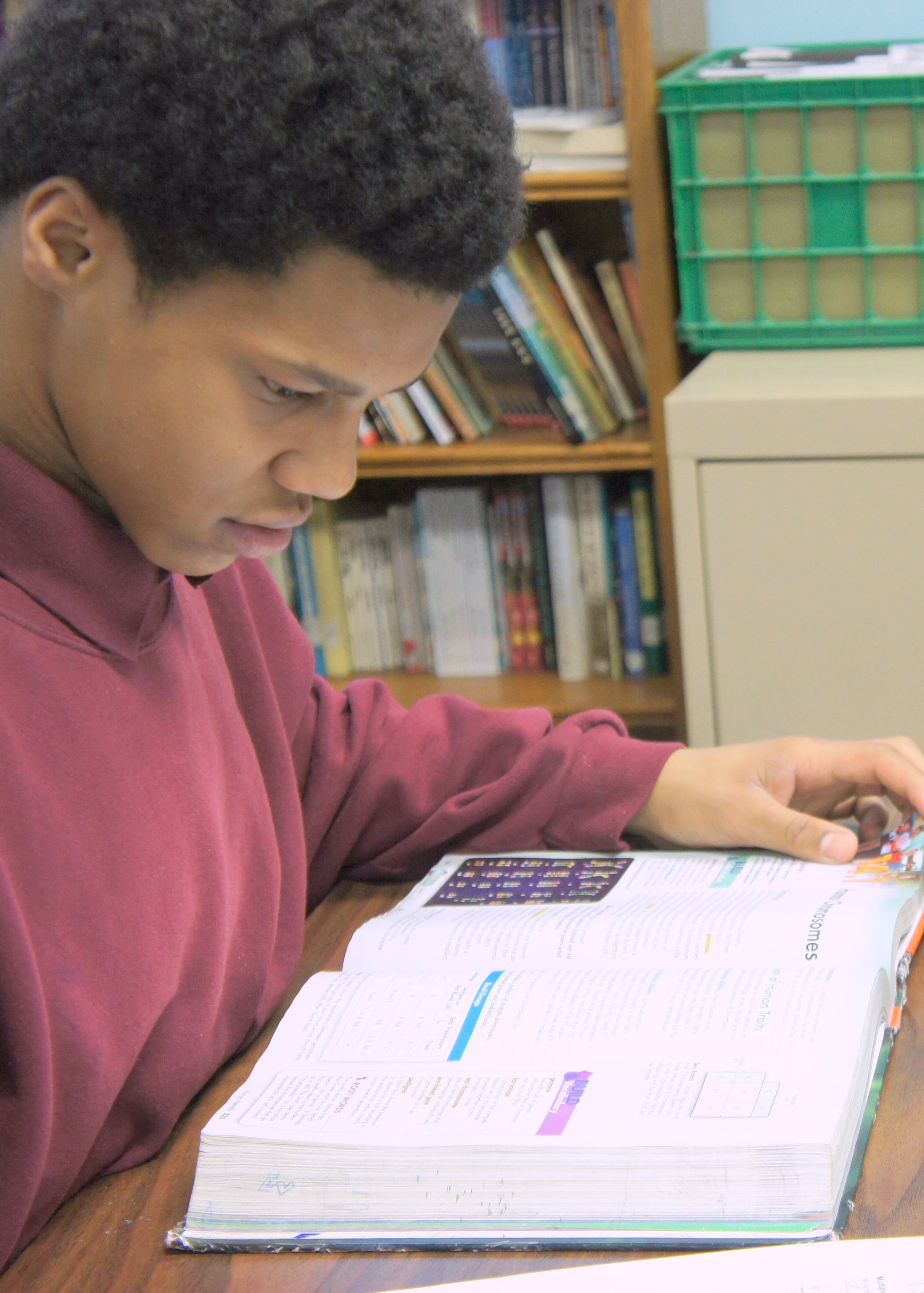 Phoenix helps students improve their emotional control, thought processes and behavior.